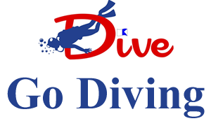 new logo - flag - go dive