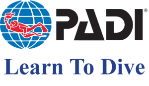padi-logo - Learn to dive